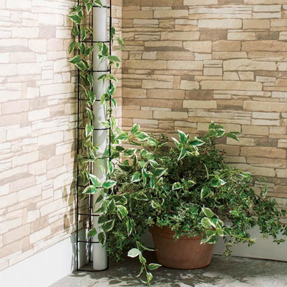 配管目隠しトレリス [After]配管目隠しトレリスを設置して植物を絡めれば、一気におしゃれなスペースに。