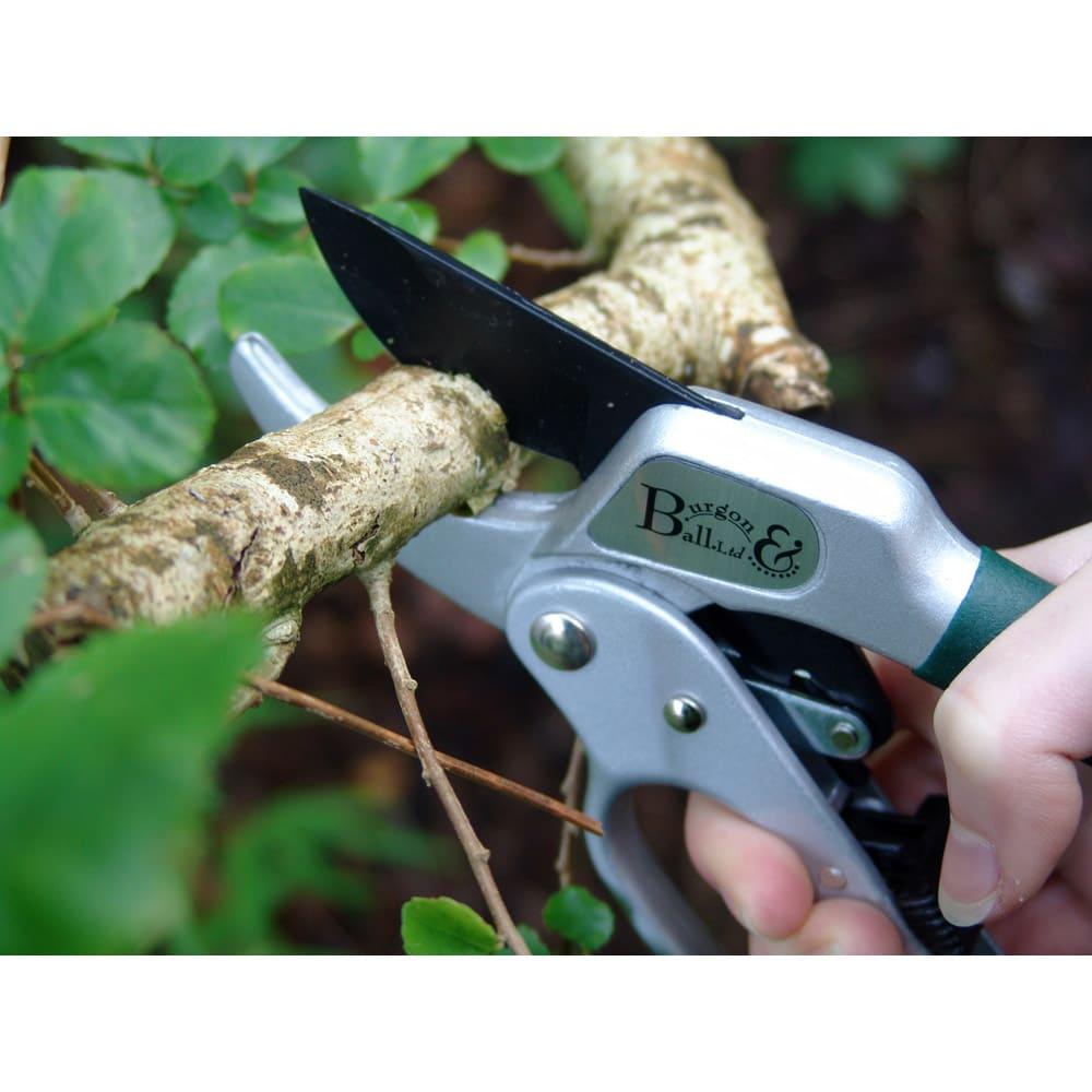 Burgon&Ball(バーゴン&ボール)ラチェットプルーナー(枝用園芸ハサミ) RHS Ratchet Pruner 太い枝も楽にカットできます。