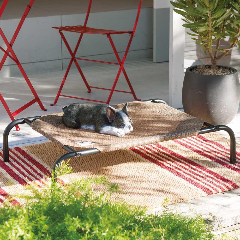 GALE社 ペット用ベッドS ナツメグ 犬