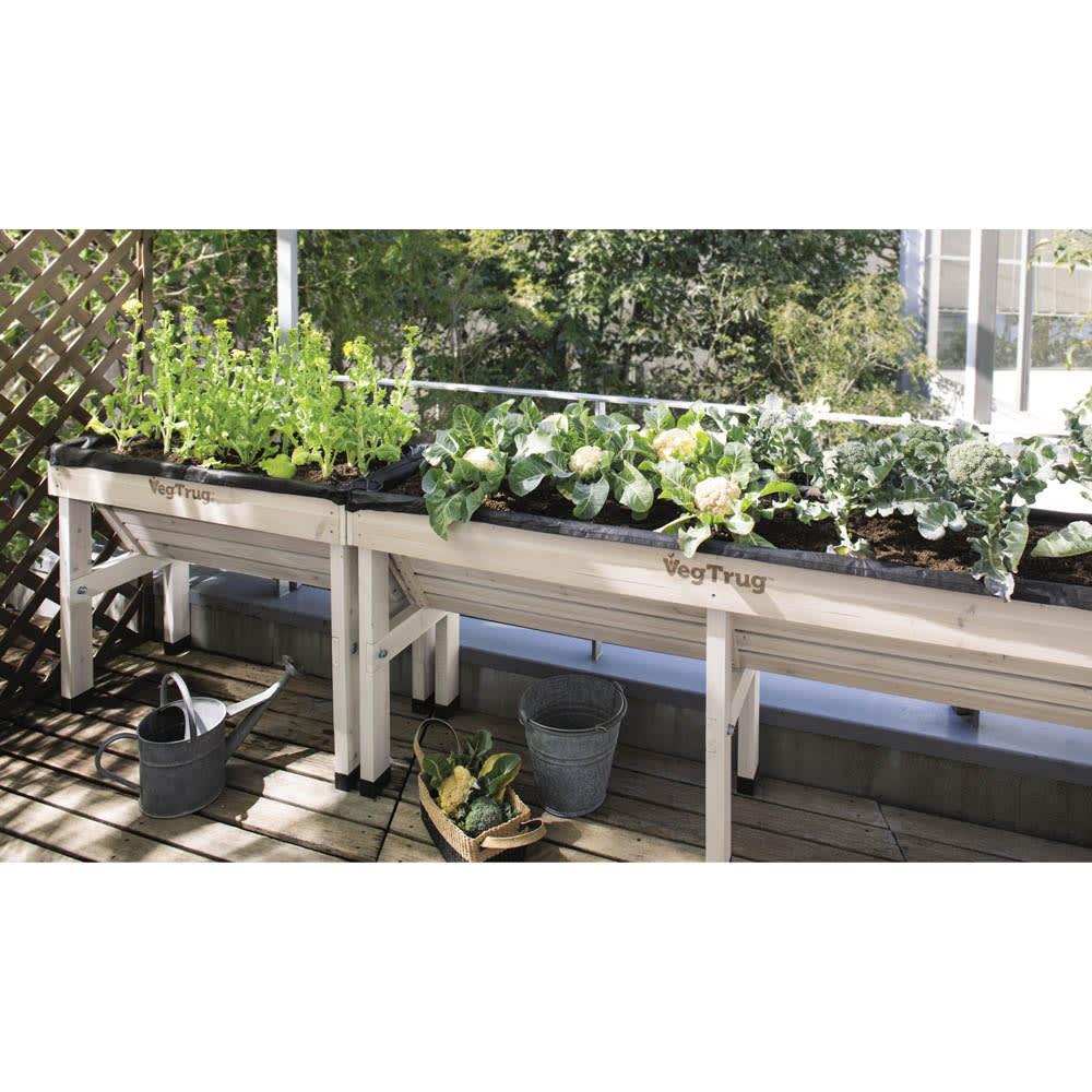 木製菜園プランター ベジトラグ L ホワイトウォッシュ プランター・鉢・フラワースタンド