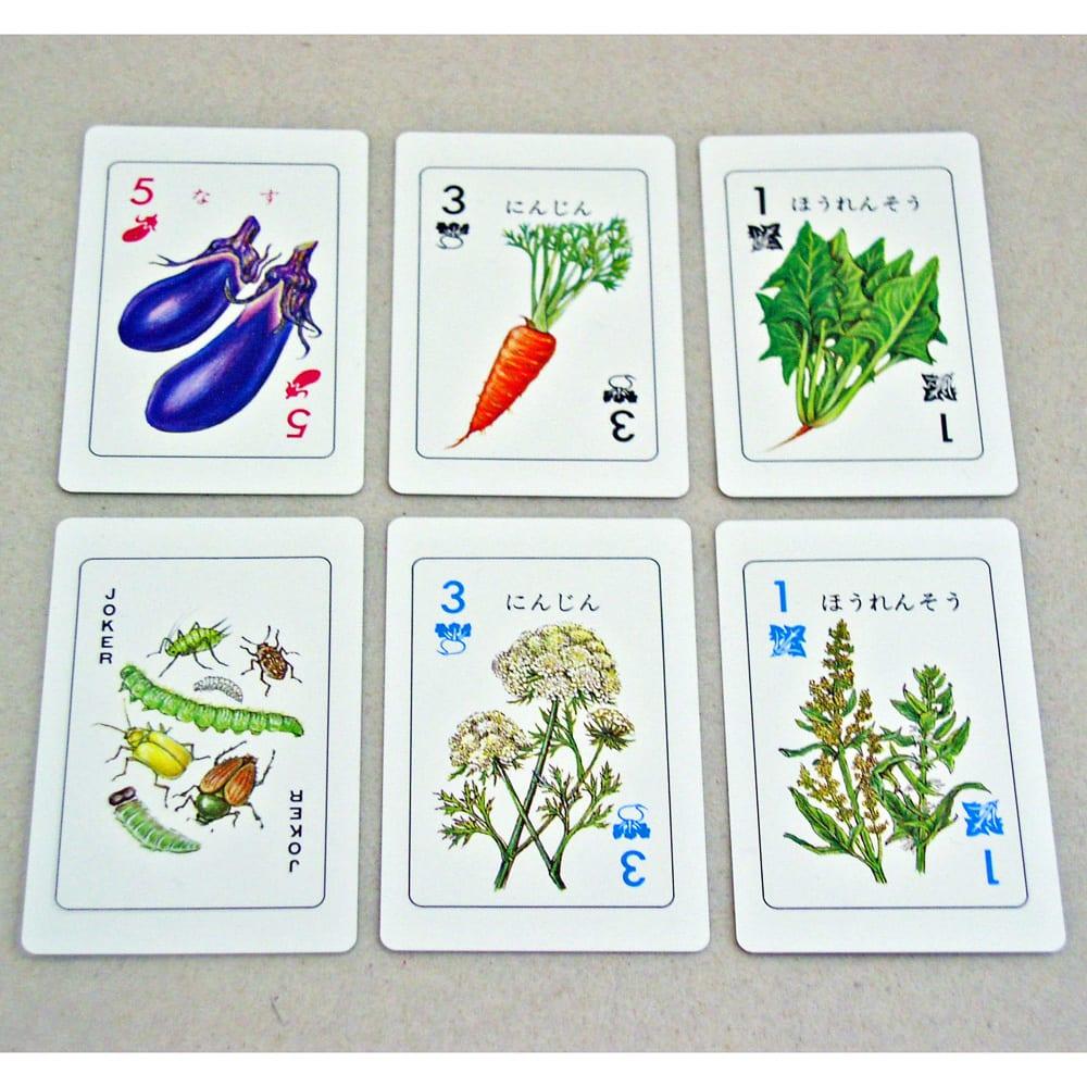 奥野かるた店/野菜カード カードは32種類、似たもの同士8種類に分類