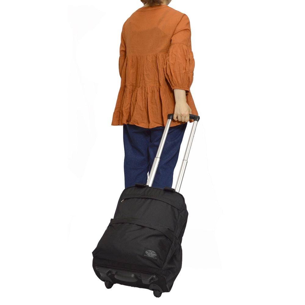 SOLO TOURIST(ソロツーリスト)/リュックサックキャリー15 ブラック スーツケース(ソフトタイプ)