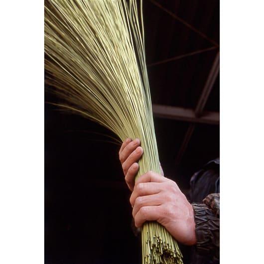 添島勲商店/い草 ロッタ スリッパ(対応約22~25cm) (5)長さ色ムラ折れのチェック:長さが足りないいぐさ、折れたいぐさ、色の調子が揃っていないいぐさ草を抜き出す。微妙な色違いが織りに影響する。織り傷を出さないために。