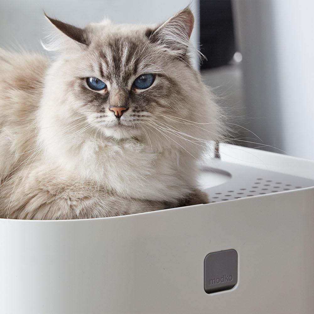 Modkat(モデキャット)/リターボックス 猫のトイレ
