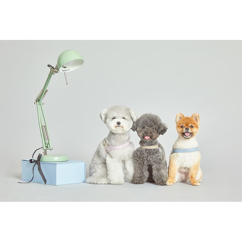 イタリア本革 犬用ハーネス Sサイズ