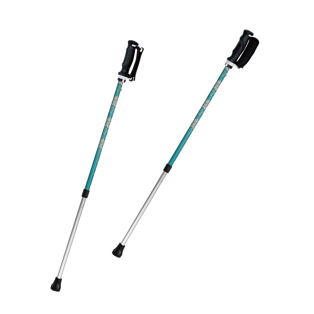 もっと安心2本杖 (イ)エルシオン