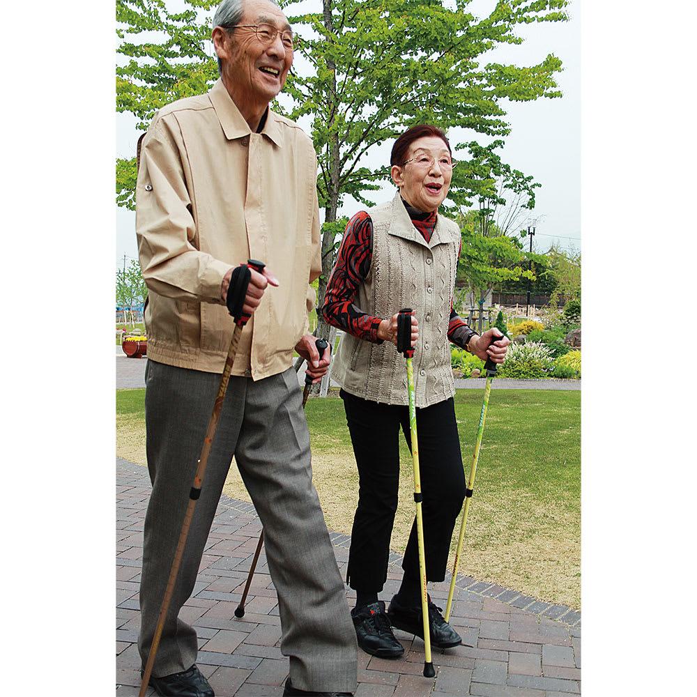 もっと安心2本杖 使用イメージ