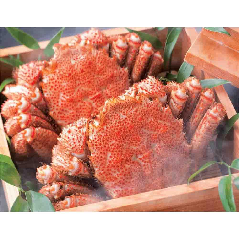 北海道えりも産 蒸し活毛がに 大サイズ (約500g×2ハイ) 魚・海産生鮮品