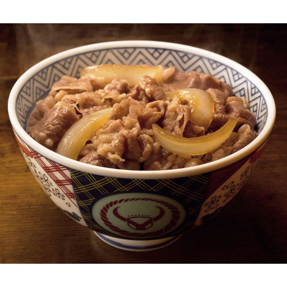 吉野家 牛丼の具 (135g×10食)  N49056