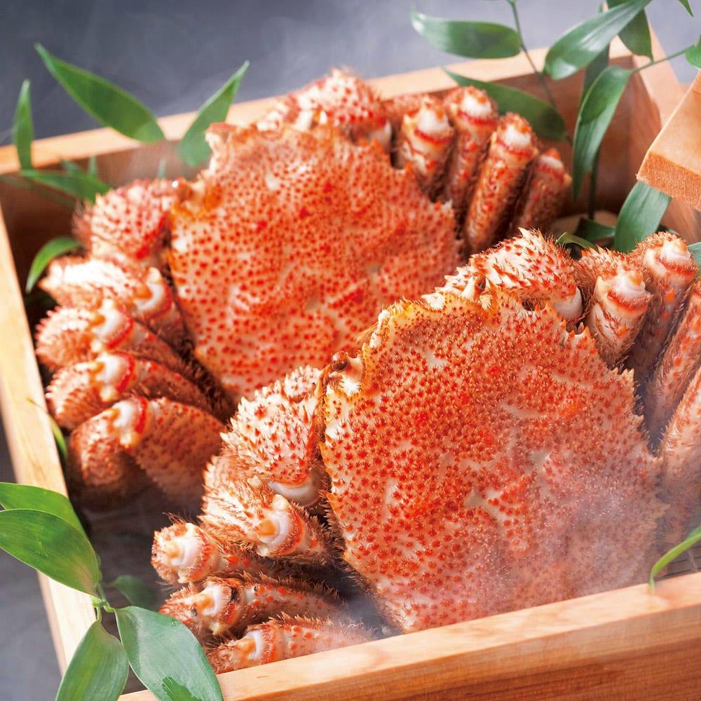 北海道えりも産 蒸し活毛がに 大(約500g)×1ハイ  魚・海産加工品