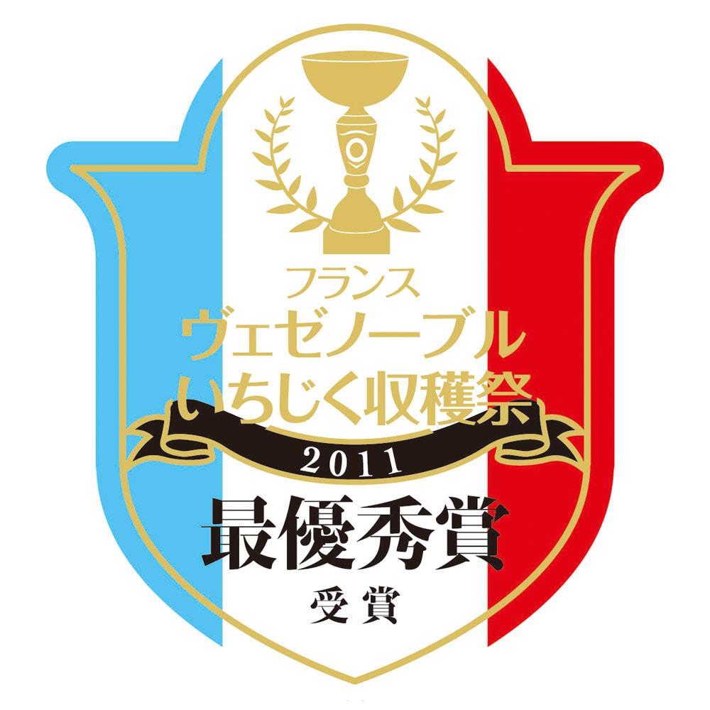 島根県多伎町産 干しいちじく (100g×5袋) フランスヴェゼノーブルいちじく収穫祭2011最優秀賞受賞