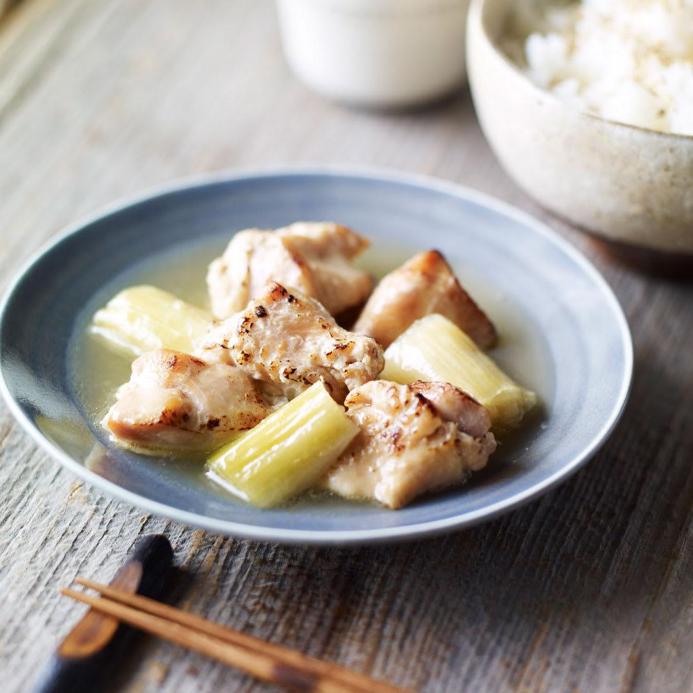 イザメシデリ 3種セット(塩麹チキン&生姜焼き&ビーフシチュー) 計9袋 【トロトロねぎの塩麹チキン】