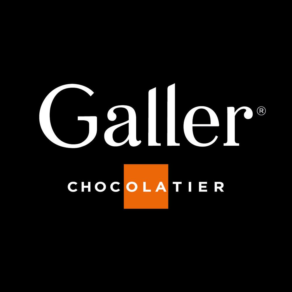 ガレー チョコレートアイスパルフェ6個