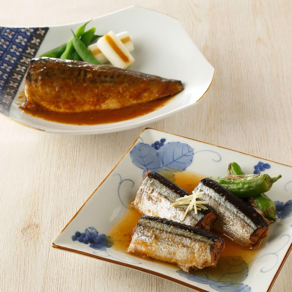 なすび亭常温煮魚 (2種計10袋) 【盛付例】なさば味噌バター煮とさんま生姜煮。