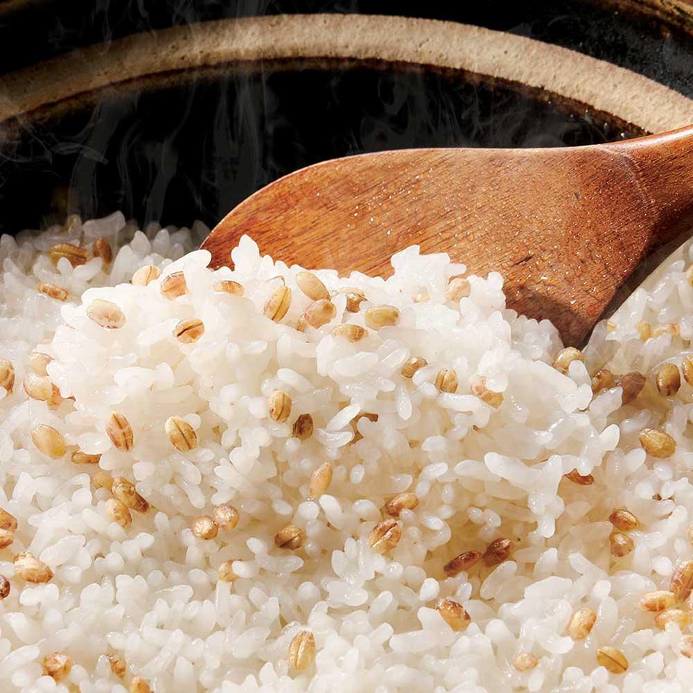 国内産 もち麦 (280g×6袋) 雑穀・米加工品