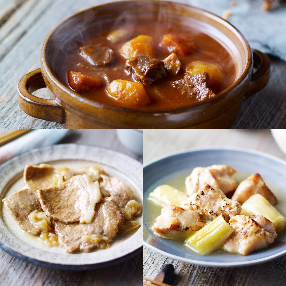 イザメシデリ 3種セット(塩麹チキン&生姜焼き&ビーフシチュー) 計9袋 和惣菜