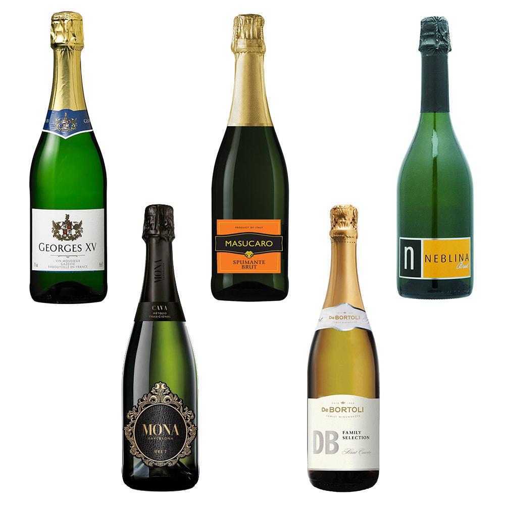 ソムリエ厳選!世界5ヶ国スパークリングワイン5種セット ワイン・日本酒・その他お酒お酒