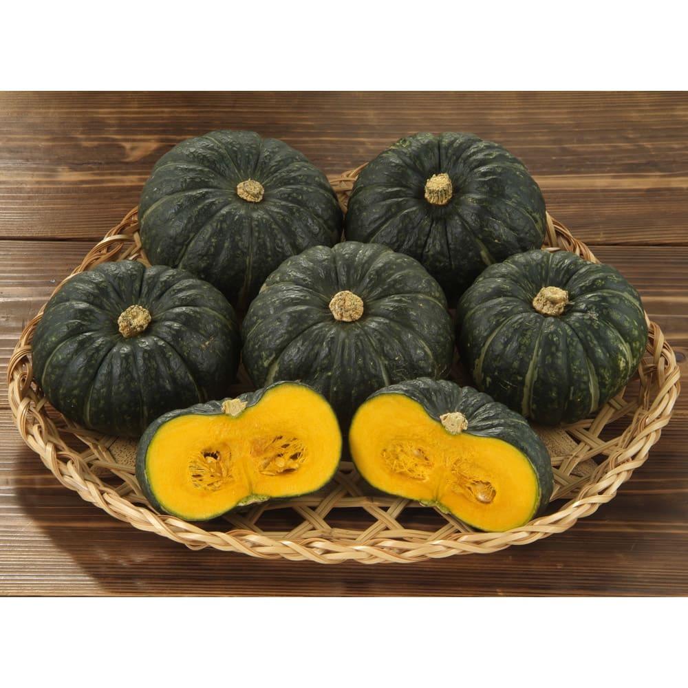空知の坊ちゃんかぼちゃ (約4kg) 野菜