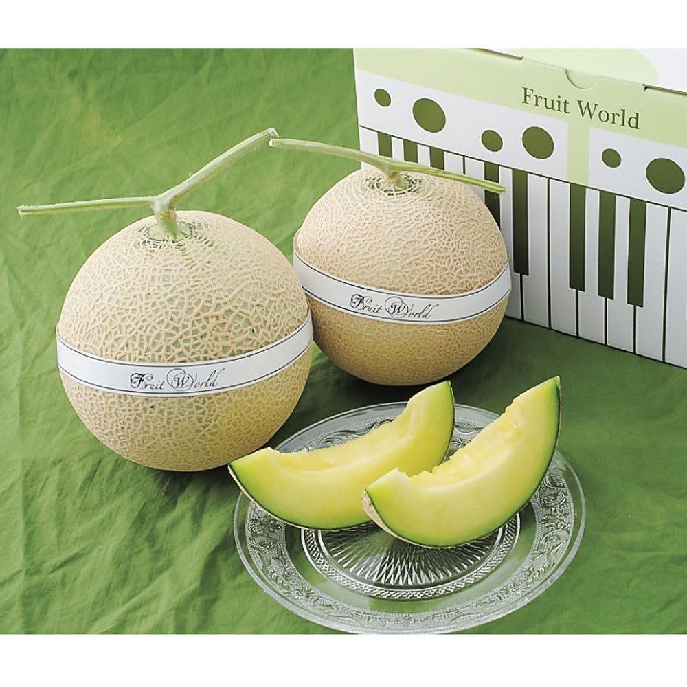 【お中元】静岡県産マスクメロン 2玉  フルーツ