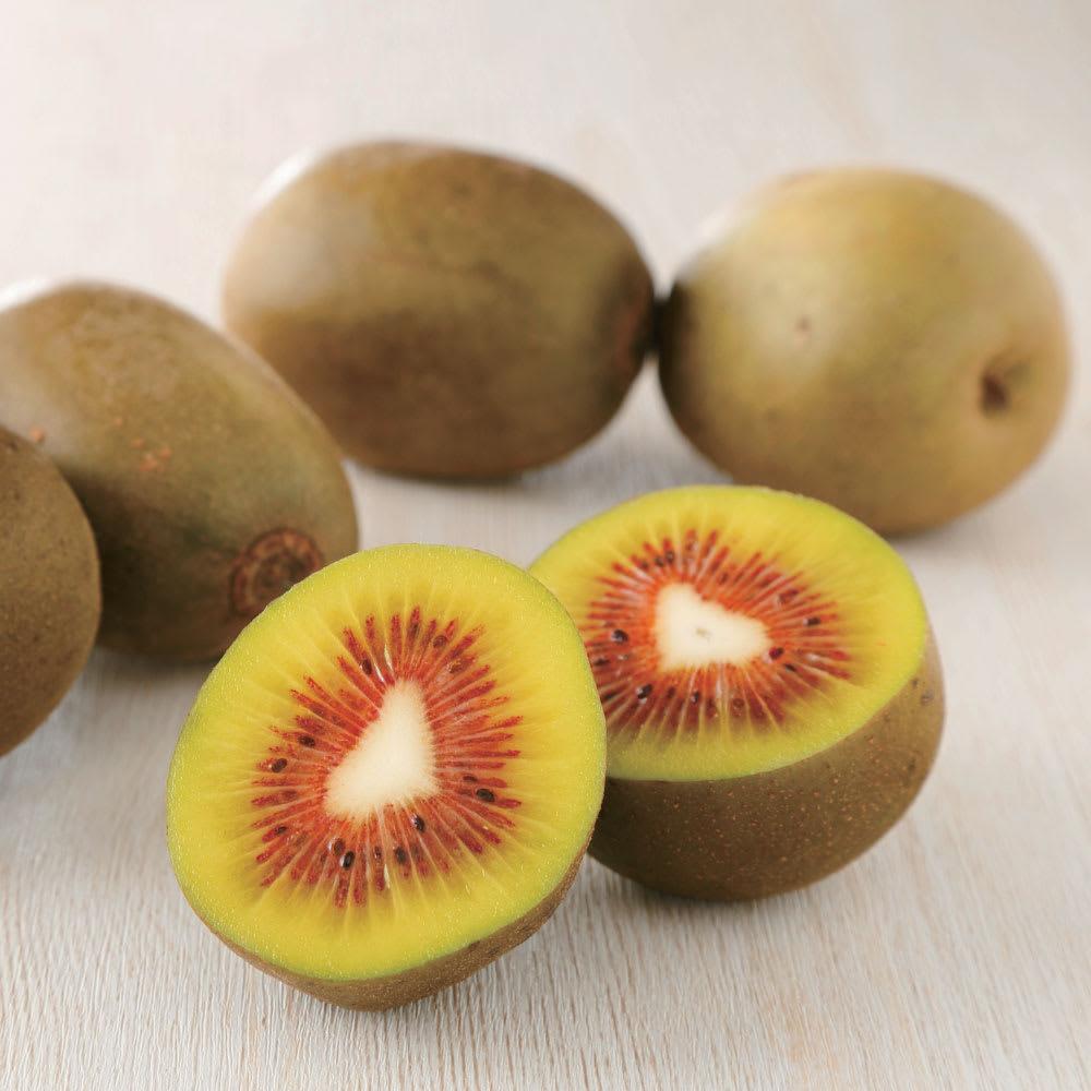 福岡産 レインボーレッド(キウイ) (約1.3kg) フルーツ