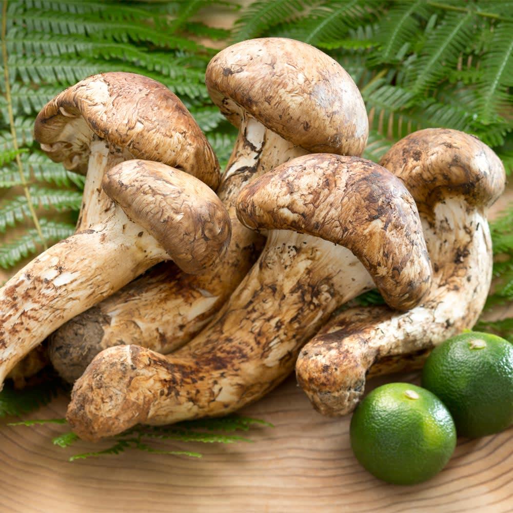 国産(岐阜県産または長野県産)松茸 (250g) 野菜