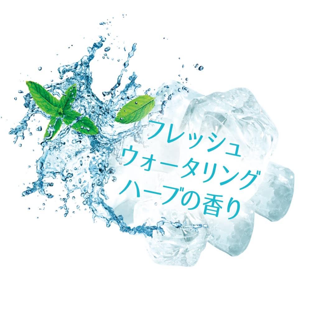 L'OCCITANE/ロクシタン ファイブハーブス ヘアケアデュオ [ファイブハーブス ピュアフレッシュネス シャイニングビネガー]フレッシュウォータリングハーブの香り