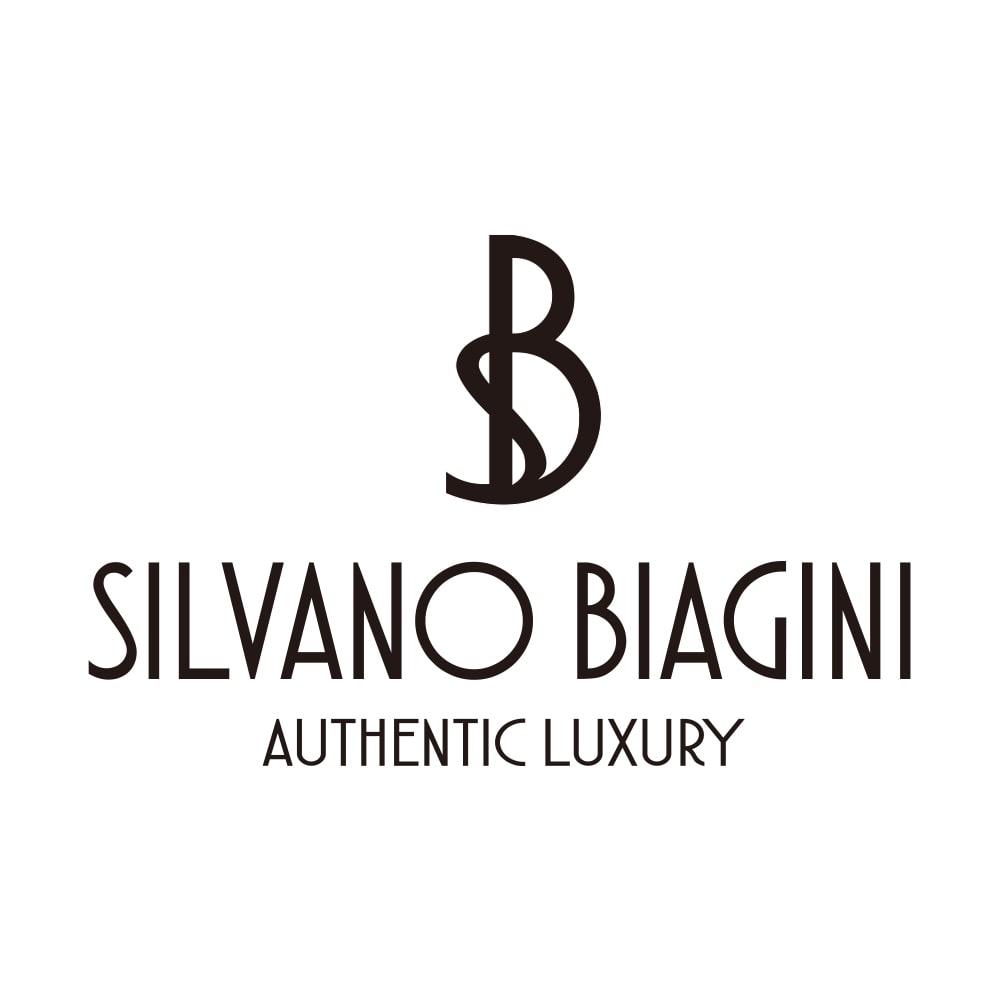 SILVANO BIAGINI/シルバーノビアジーニ プリーツ バッグ(イタリア製)
