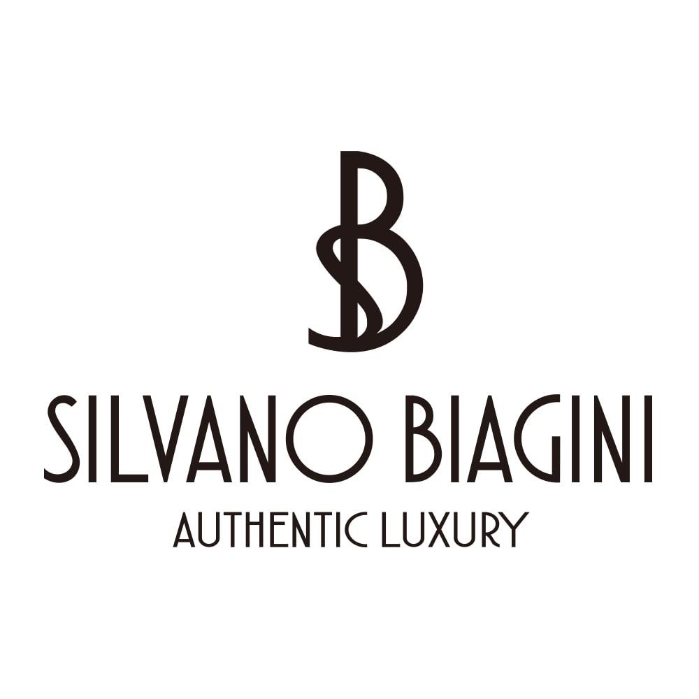 SILVANO BIAGINI/シルバーノビアジーニ ビジュー使いパイソン チェーンバッグ(イタリア製)