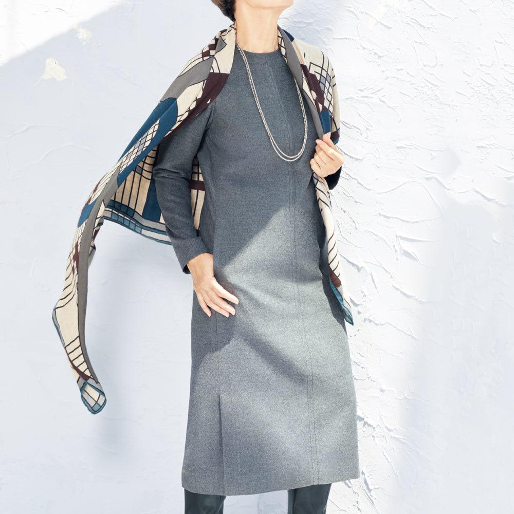ノバラ社 イタリア素材 シルク起毛仕上げ ワンピース 着用例