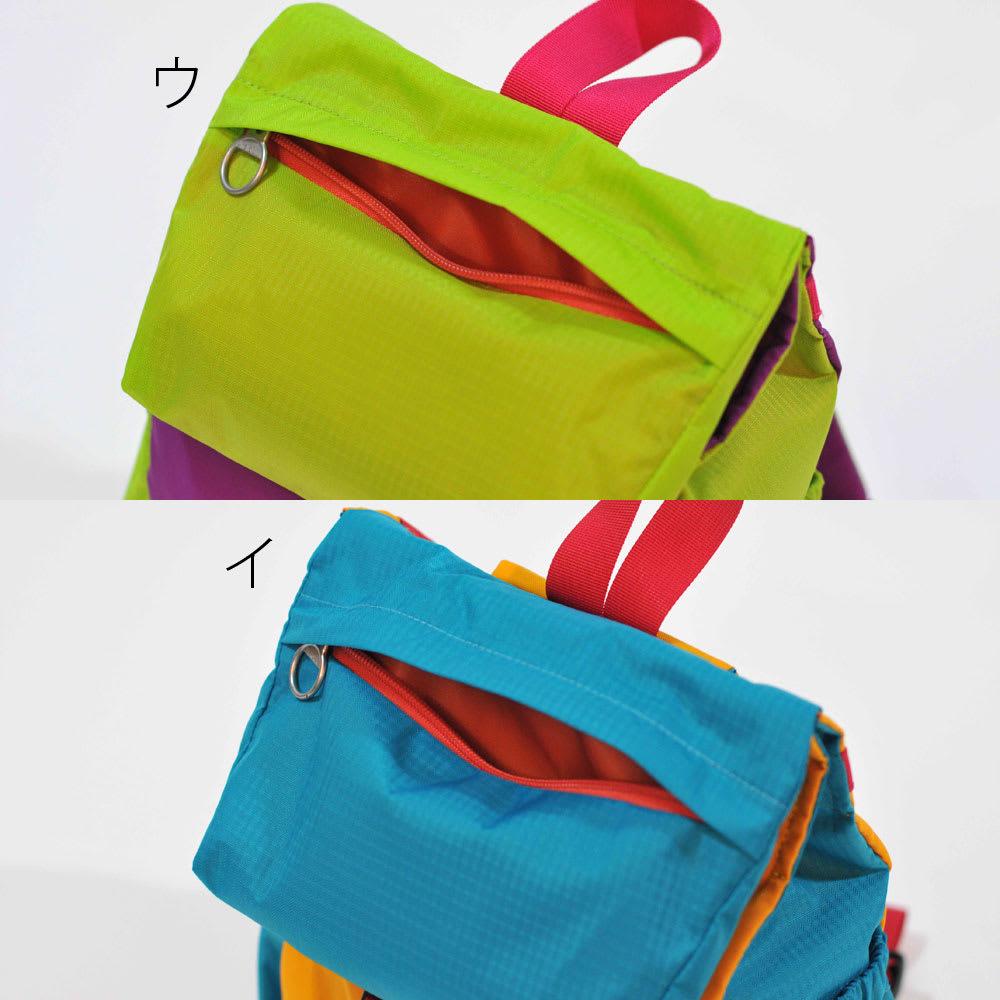 バックパック ライナス[ハロルル/hellolulu] フラップタイプのポケット付きカバーとジップ式ポケット