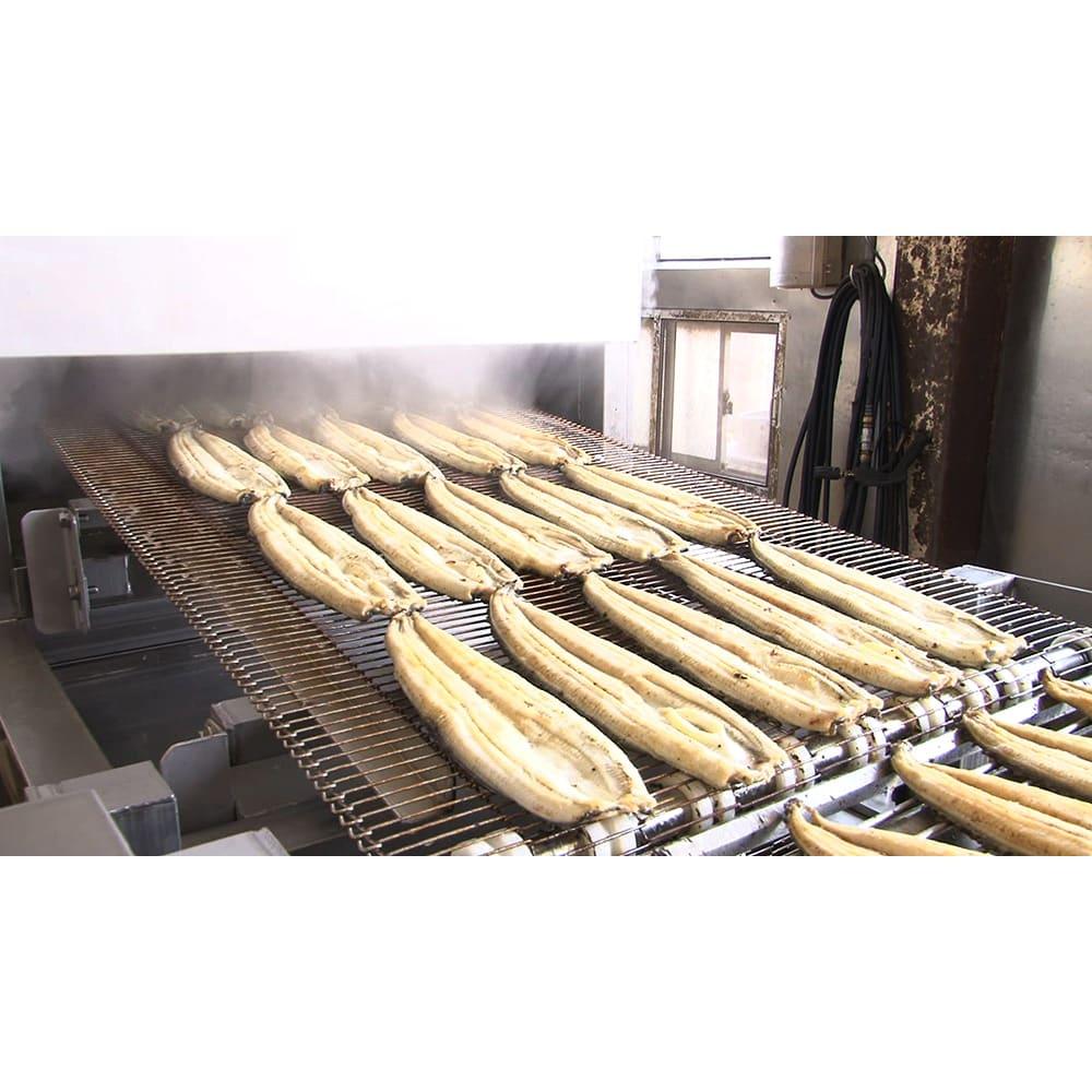 三河産うなぎ ワケあり6食セット ・「蒸し」…2度蒸しで、柔らかい身をさらに柔らかく。
