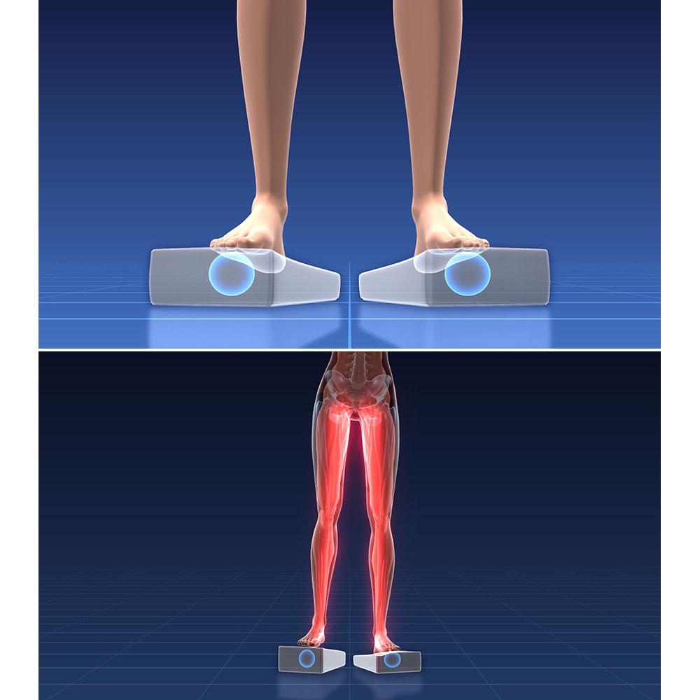 イージートレーナー  少し広げて立って踏むと、脚の内側の内転筋もラクにトレーニングできます ※イメージ