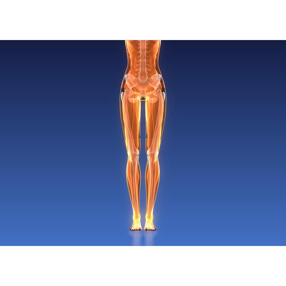 イージートレーナー  足首回りがやわらかくなれば、体のバランスが整いやすく筋肉も使われやすい状態に ※イメージ