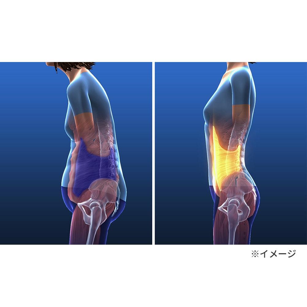 らくらく腹圧ベルト 腹圧トレーニングでおなかのインナーマッスル「コルセット筋」が鍛えられると、普段からおなかが凹んだ状態をキープできます