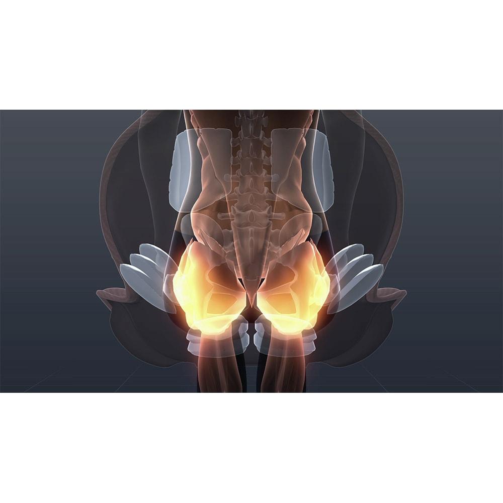 芦屋美整体 骨盤プロリセットエアー ※イメージ ○ヒップエクサ…座面のエアーバッグが膨らみ、お尻周りを動かします。<br />