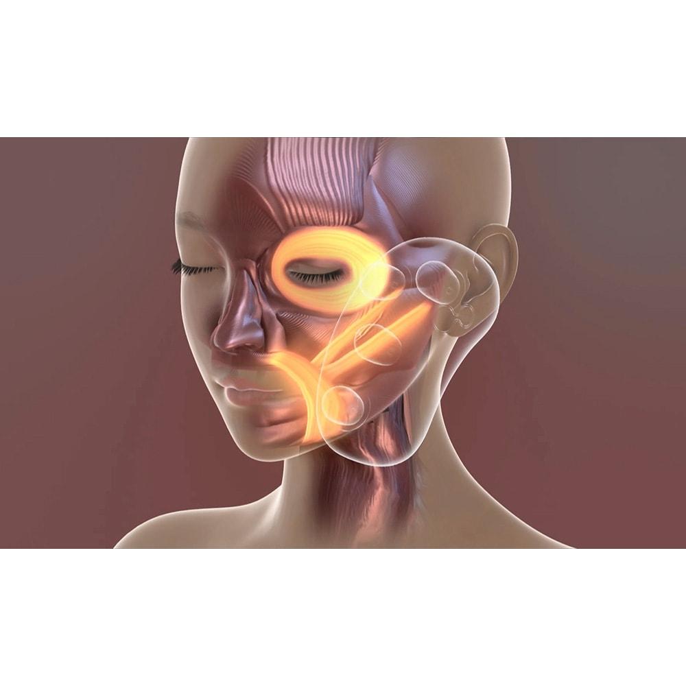 ミーゼ ウェーブスパ 年齢が出やすい口元、頬を4つのローラーが複雑に回転してアプローチ。表情筋を刺激します。 ※イメージ
