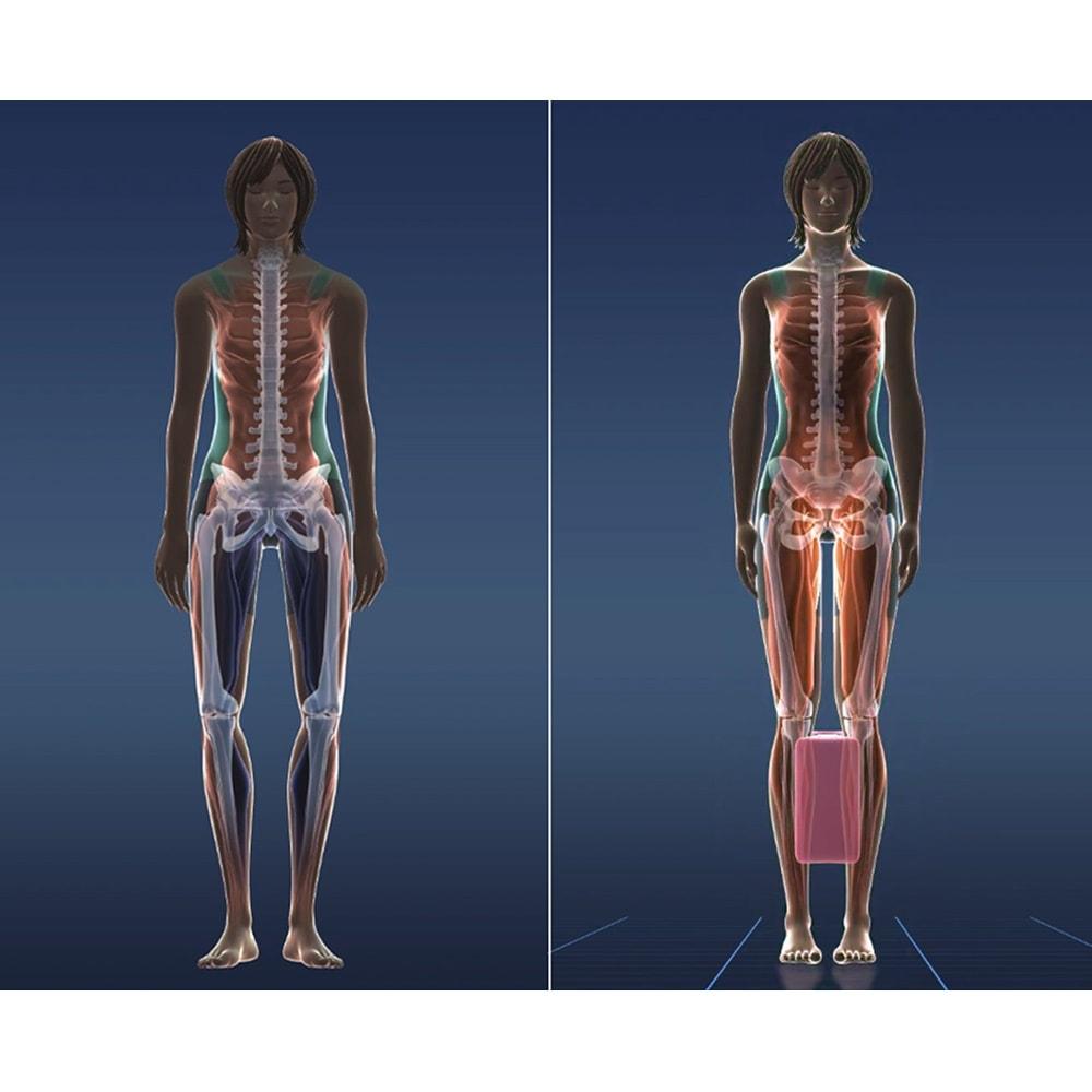 ジェットスリムボディMAX 《さらにパワフルな振動で筋トレ効率がアップ》ふくらはぎに挟むと、それだけで骨盤の位置が決まり、骨盤が立った美姿勢に。