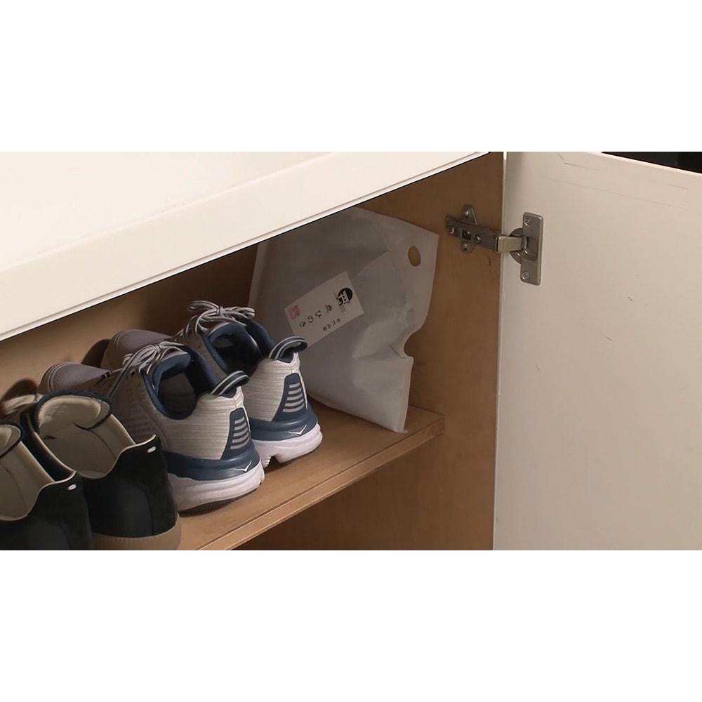 古代出雲 炭ひのき ディノス特別セット 臭いやカビが気になる靴箱に。