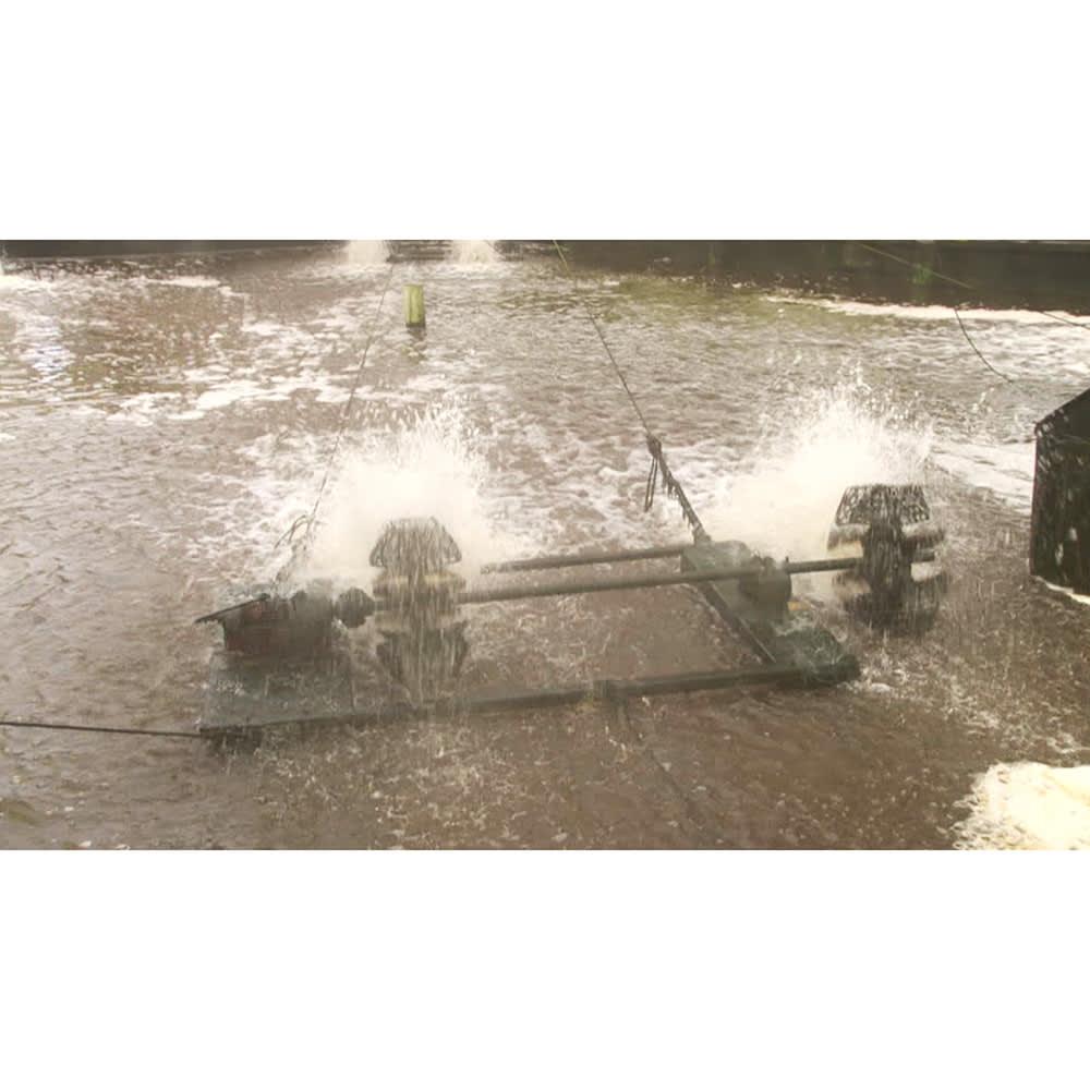 愛知・三河産うなぎ蒲焼 2Lサイズ3尾セット うなぎの養殖に適している矢作川の天然水を引き込んだ養殖場。池の底には山土を敷き、自然環境にこだわり育てました。