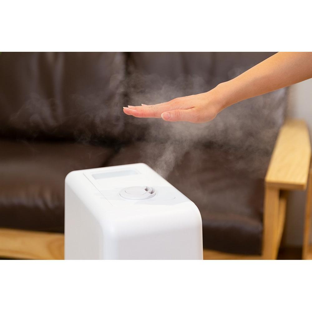 ハイブリッド抗菌加湿器 アクアバースト ハイブリッド式だからミストが熱くないのも嬉しいポイント♪
