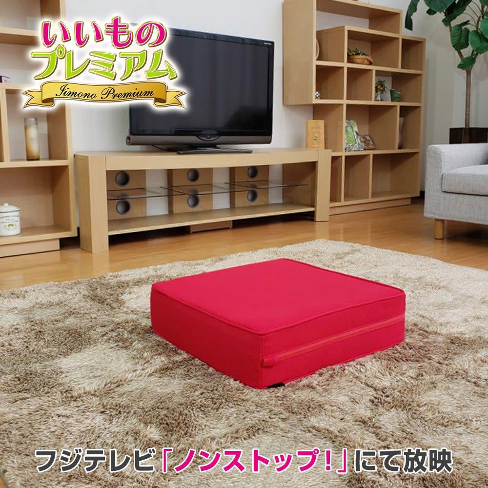 テレビ放送商品 シェイプ フィットネス器具 パーフェクトエクサ(R) AR2015