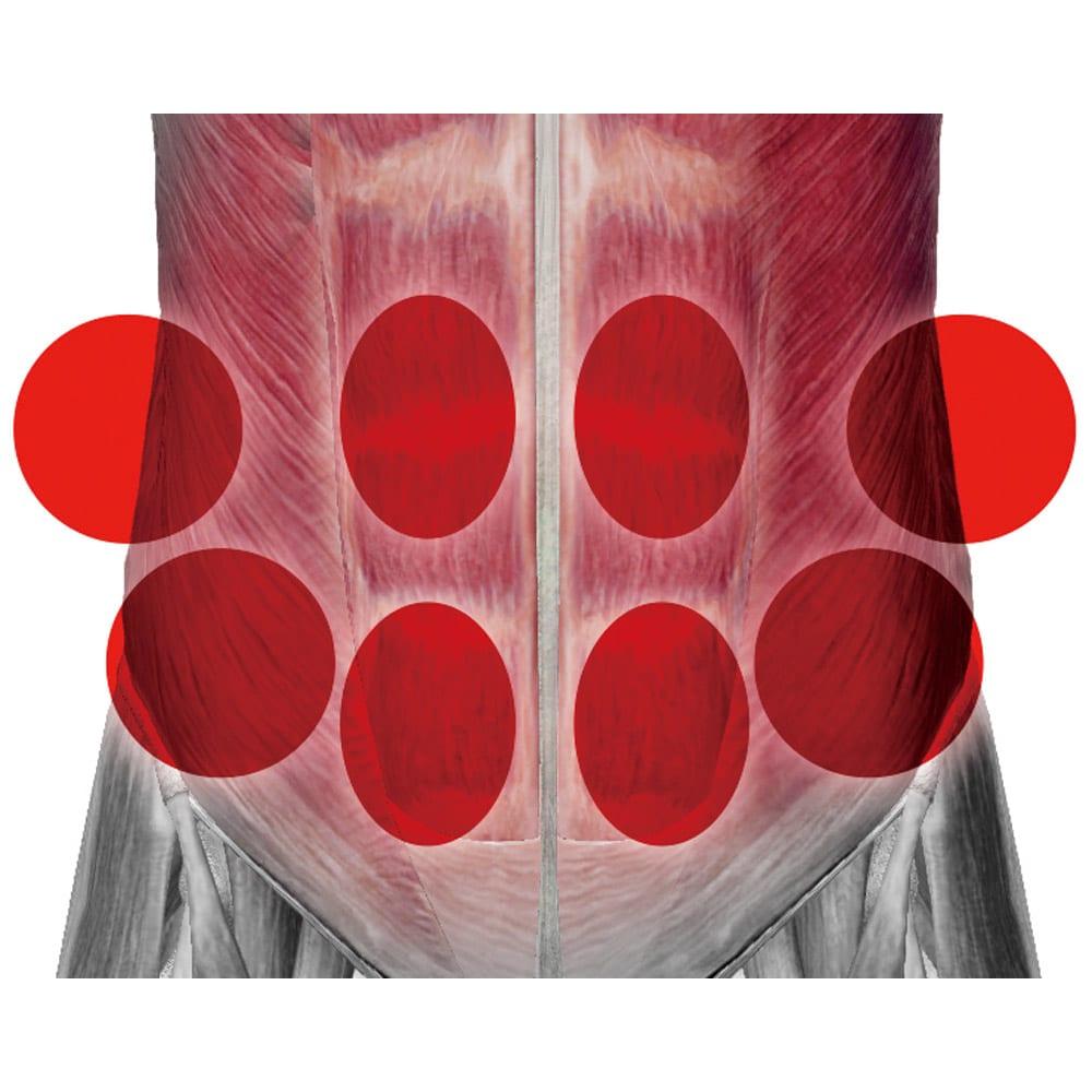 TBC スレンダーパッド2 DX(ボディ・ヒップ・腰用) Point.1 実際のTBCボディシェイプコースのパッド配置を応用。筋肉の構造に合わせて8つのパッドを設計。