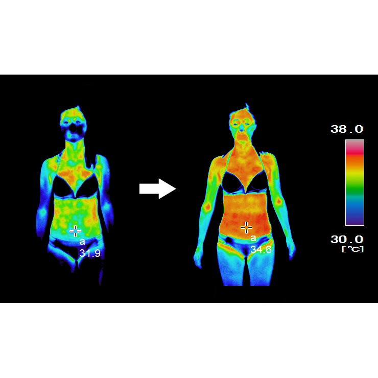 ターボセル プレミアムベルトコア 【サーモ試験】着用後約20分でこの変化。お腹周りに巻いただけなのに体全体が暖かくなっているのが分かります。(※結果を保証するものではありません。※個人差があります。)
