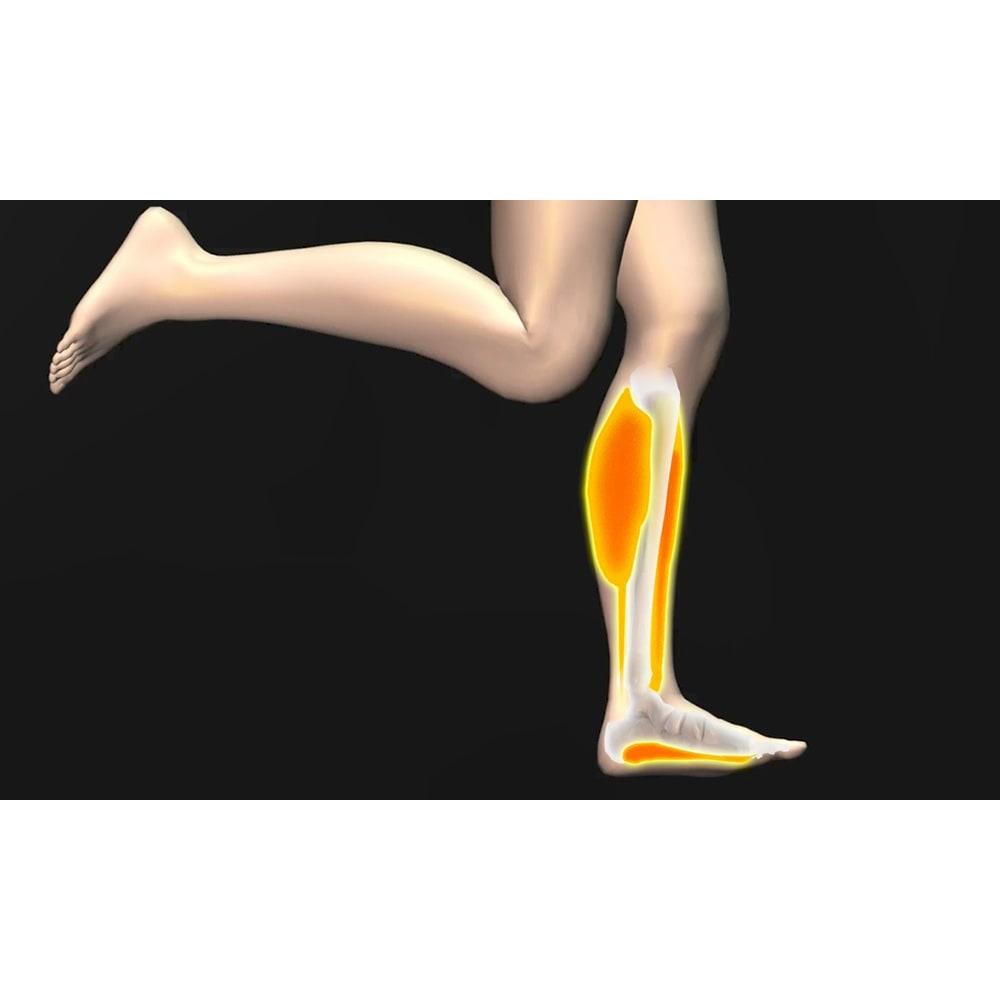 足元EMSトレーニング レグネス 走る、歩くなど日常生活の動きを支える足元の筋肉