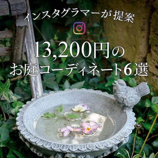 インスタグラマーが提案する9,990円のお庭コーディネート