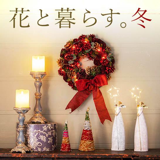 花と暮らす。冬 クリスマス特集