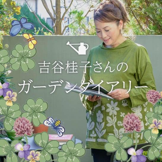 人気ガーデナー吉谷桂子さん ブログ連載中!