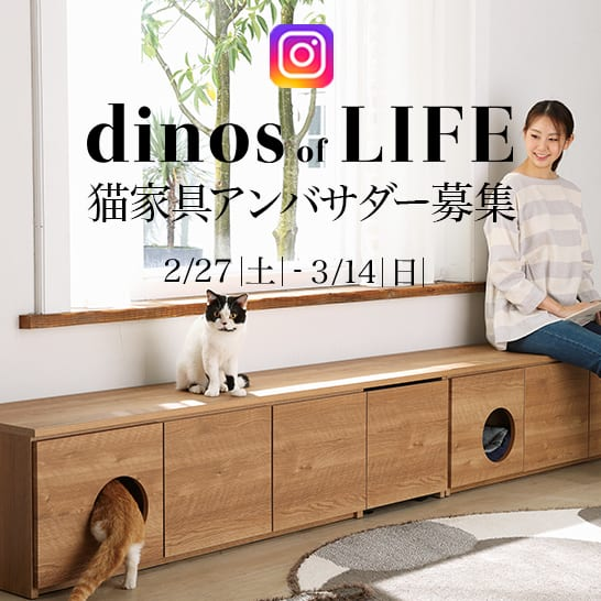 dinos of LIFE公式アンバサダー募集!