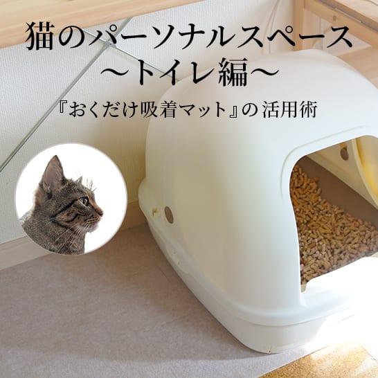 ストレスフリーな猫との暮らし。『おくだけ吸着マット』の活用術 Part.2
