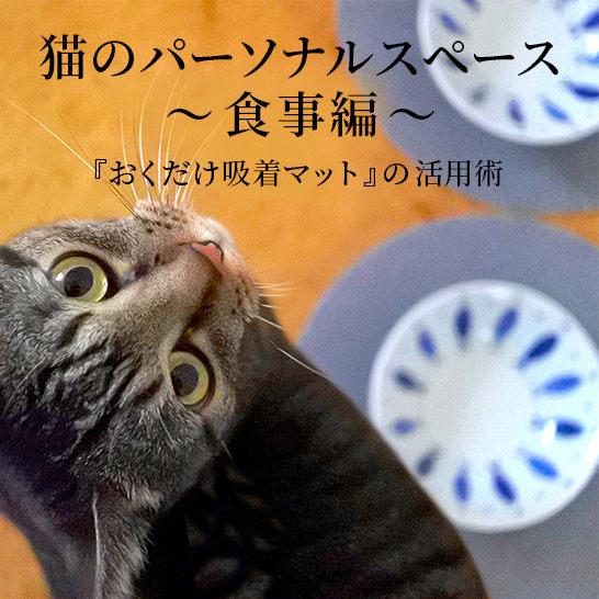 ストレスフリーな猫との暮らし。『おくだけ吸着マット』の活用術 Part.3